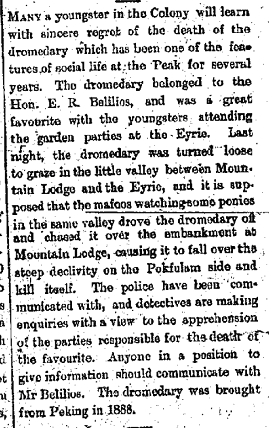 Demise of Belilios Camel - China Mail p2 1897-07-24