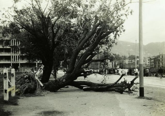 1937 Causeway Road after Typhoon