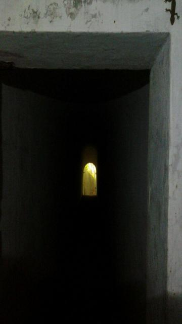 4.56 pm looking back at entrance from inside pillbox.jpg