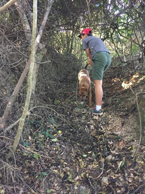 My brother and dog walking up the trench