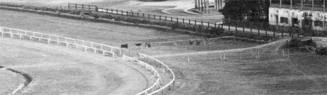 Training (left) and Race (right) Courses