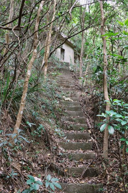 Military Shelters at Pokfulam Reservoir - Stairway to Structure A