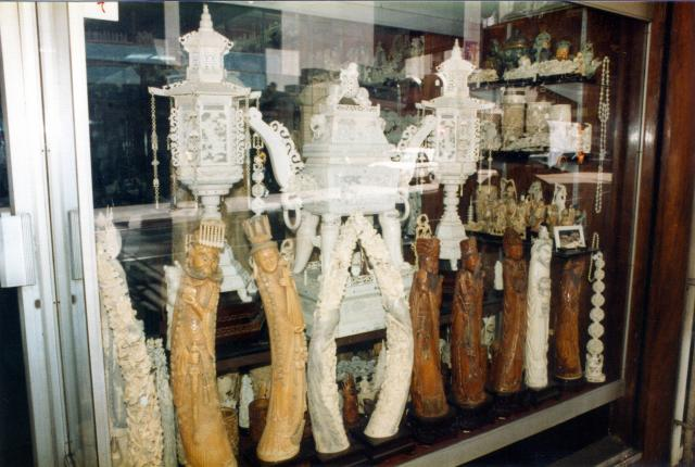 Ivory shop window