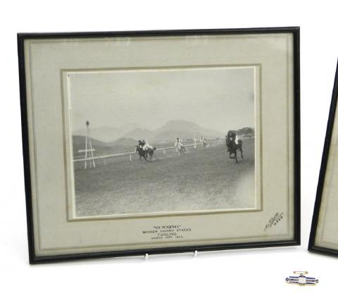 Sunning - Winner of the Hunan Stakes, Fanling 1932