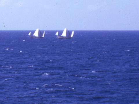 1966 Fishing junks under sail, out in the South China Sea.
