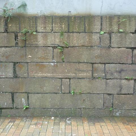 Wall outside Western Police Station