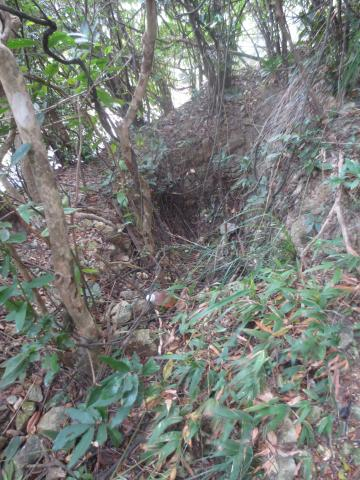 Trench above Stanley Gap Road