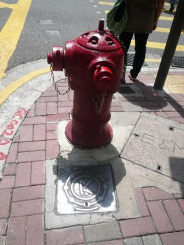 Rediffusion Inspection Cover (small) with Fire Hydrant