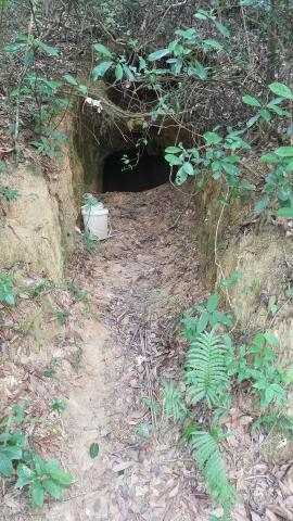 Japanese tunnel on north slope of Beacon Hill - large entrance