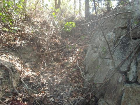 Wall and trench of blockhouse 22 at Railway Pass in 2009