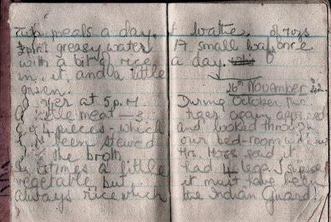 Diary - pages 9-10.JPG
