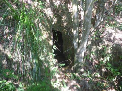 Entrance to the charcoal cave