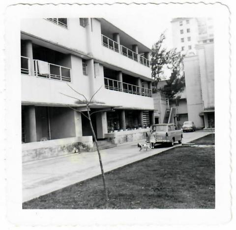Chan Gardens opposite Kowloon Hospital.  1960/61