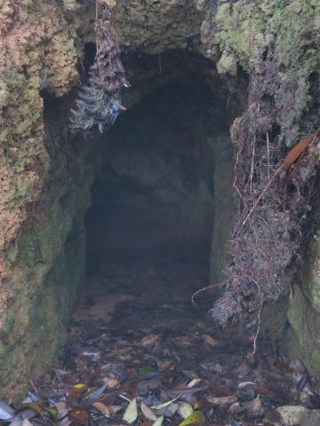 Site I: tunnel entrance