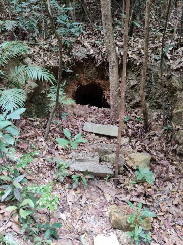 Japanese tunnel in Pinewood Battery area.jpg