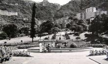 1950s Botanical Gardens Fountain