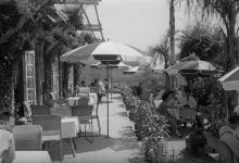 The Peak Cafe,1953-54