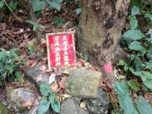 Can anyone translate the plaque? It was beside a tree near Nam Koo