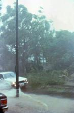 1979 - Tai Hang Road duringTyphoon Hope