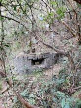 Mount Cameron Japanese U-shaped Firing Position and Tunnel.jpg