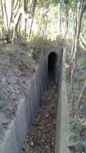 4.50pm trench leading to entrance to pillbox.jpg