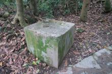 Pillbox 100, Duckling Hill