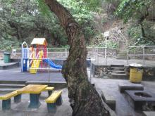 Turtle Cove Playground