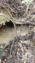 Partially Collapsed tunnel