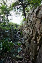 The stone-wall path