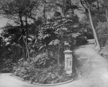 Road leading to the Public Garden