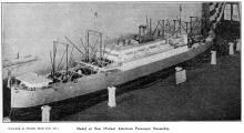 Model-Steamship -535 ft. Type - Pacific Mail-Company