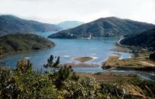 Tai Tam Harbour