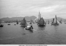 Hong Kong, boats in the harbor