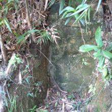 Japanese wartime tunnel, Mount Cameron