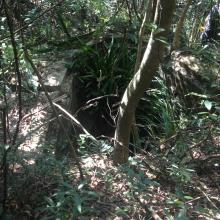 Japanese PIllbox / Tunnel, Mt Cameron