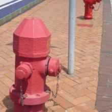 Old & New Fire Hydrants - Kowloon Tong