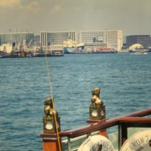 Tsim Sha Tsui from harbour tour 'junk'.