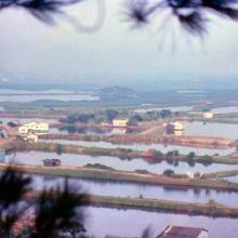 1979 - view from Lok Ma Chau Lookout