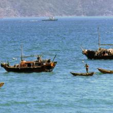 1977 Boats New Territories.jpg