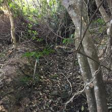 Other side of trench
