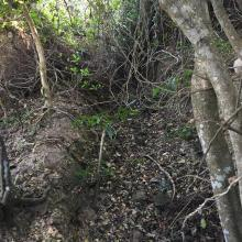 View of trench