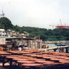 Ma Wan in about 1995