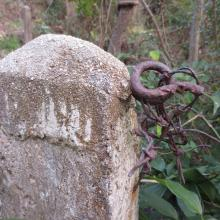 Barbed wire attached to fence post.