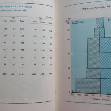 Population and the Population Pyramid, 1971