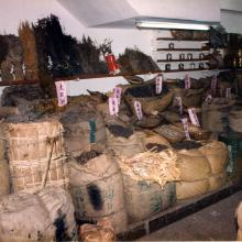 Dried herbal medicine store