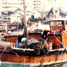 Shau Kei Wan fishing fleet